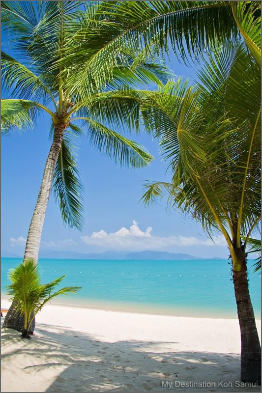Mae Nam Beach, Samui koh-samui-beaches