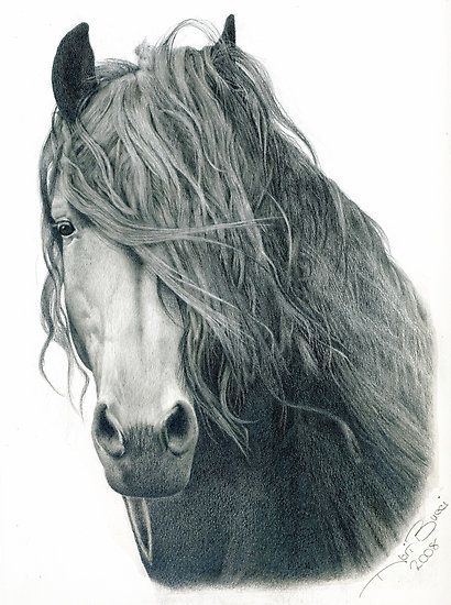 10 splendidi disegni a matita. 10 beautiful drawings in pencil.