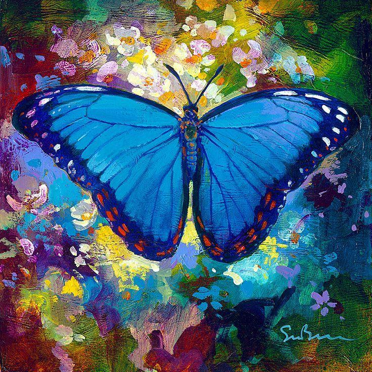 melhores ideias de Mariposa morfo azul no Pinterest
