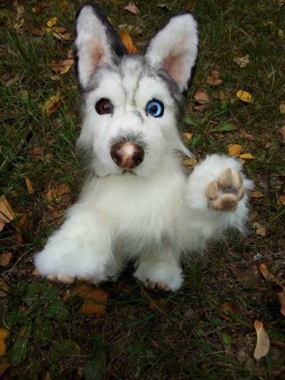 Siberian Husky Scarecrow Dog Ooak Handmade Gifts Animal Art Doll