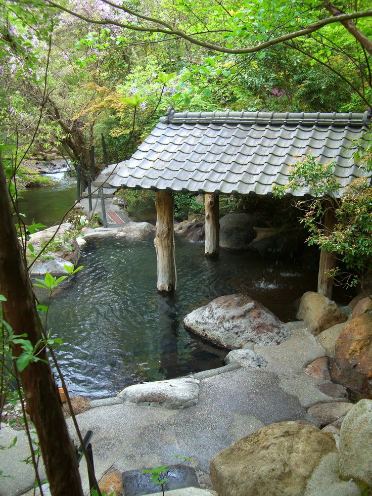 We rented a private waterfall Onsen (hot spring) in Beppu, Japan