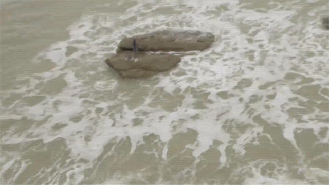 Настоящие русалки, найденные на пляжах Гавайев и Египта.