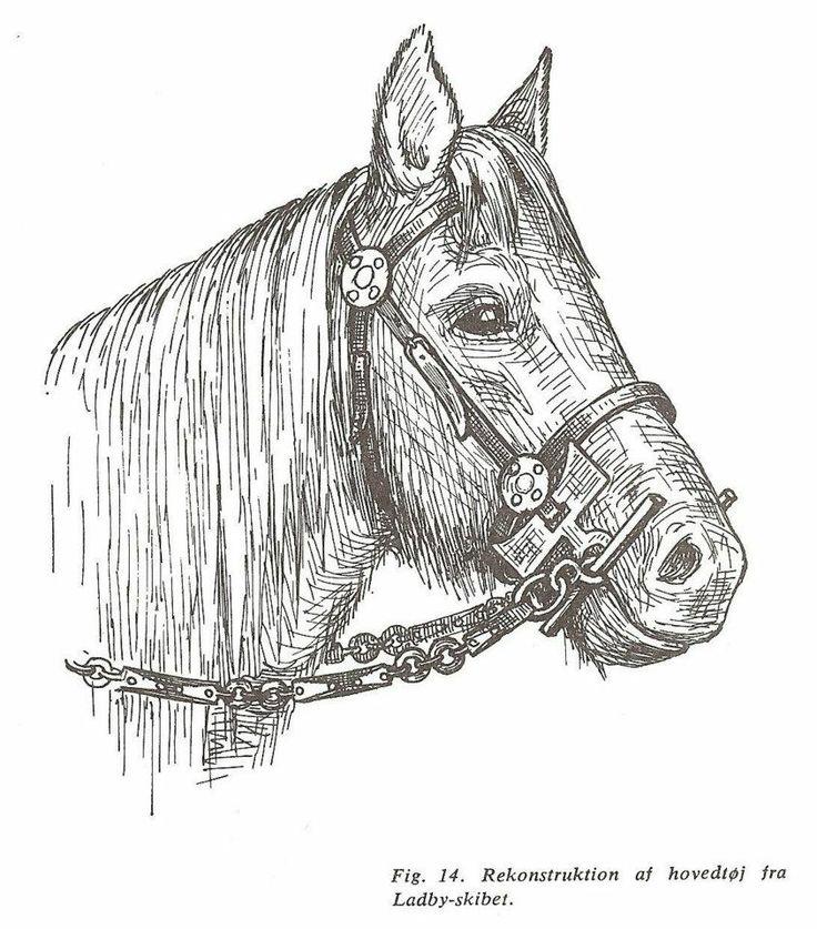 66 best dark age horses images on pinterest