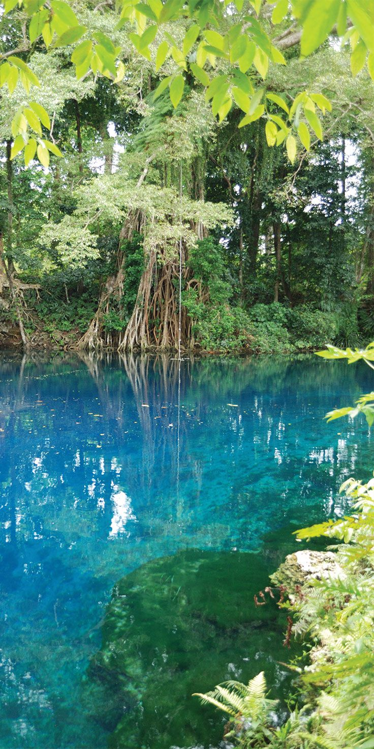 The mystical blue pools in Vanuatu