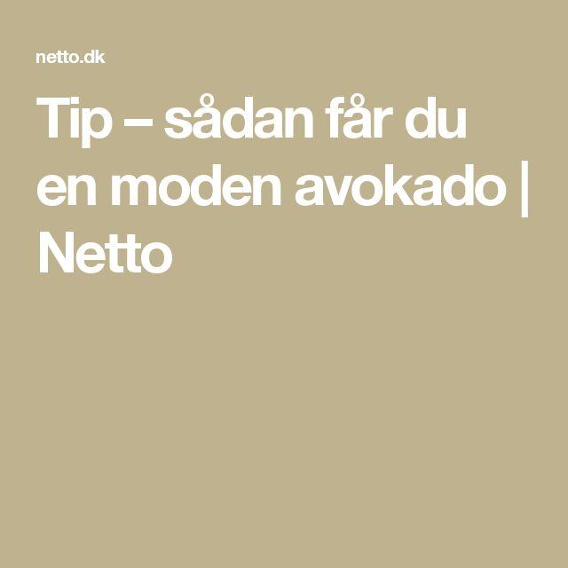 Tip – sådan får du en moden avokado | Netto