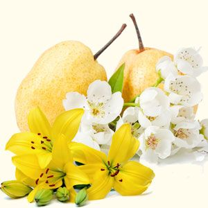 Asian Pear and Lily Fragrance Oil from Nature's Garden is a sophisticated fruit and floral scent perfect for soapmaking, scented candles, and room scents.  #AsianPearandLily #FragranceOil #NaturesGarden #FreshFruitFragrances #FloralFragrances #SophisticatedScents #Soapmaking #HomemadeSoap #CPSoap #HomemadeCandles #DIYBathandBody #DIYRoomScents #AromaBeads #Lotions #Bodyspray