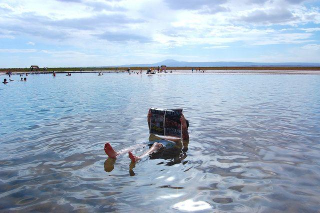 ♪ La Laguna Cejar, cerca de San Pedro de Atacama, tiene una altísima salinidad lo que permite flotar con inusual facilidad.