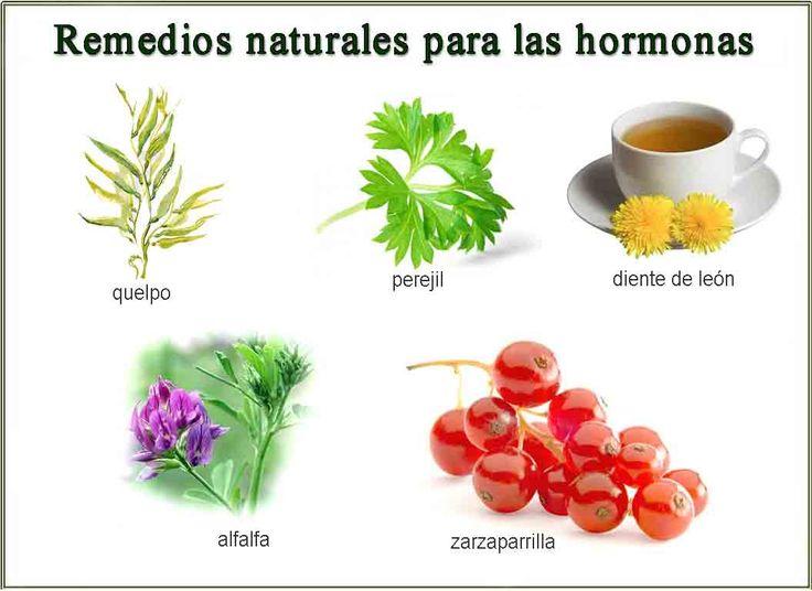 Remedios Naturales para regular las hormonas