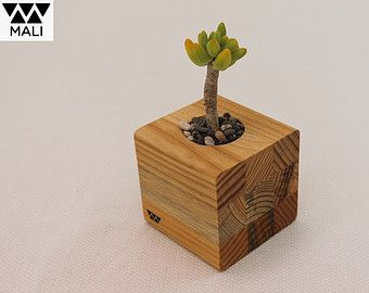 Maceta decorativa para interior. Diseño original de Mali, hecha 100% de madera sólida. Ideal para plantas que requieren poca agua.
