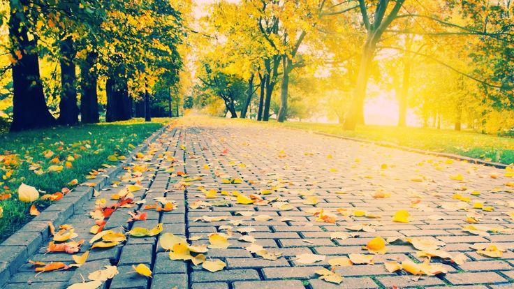 9 Adımda Hayata Yeniden Başlamak