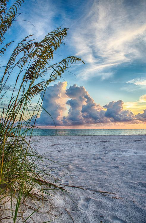 Sunrise or sunsets... It's beautiful on the beach and the bayside of our 'Tween Waters Inn on Captiva Island in Southwest Florida. Join us anytime...  | re-pinned by http://www.wfpcc.com