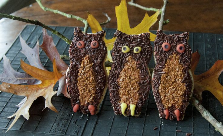 These adorable owls are feathered in chocolate flakes. Isn't that a hoot? ht.ly/Kl2k306fhW8