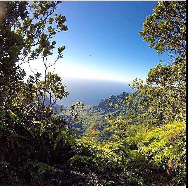 Perfect view right? #cyrcaoriginals #cyrcaoriginalsshirts #streetwear #tee #tshirt #kauai #hawaii #paradise Photo by @discoverkauai #discoverkauai