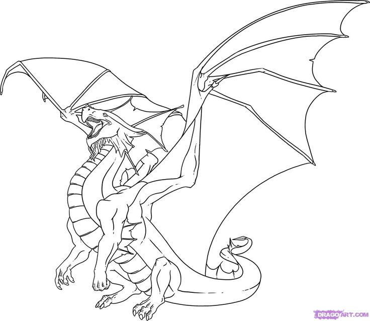 Home Coloring Pages Dragon Drawings In Color Id 96200