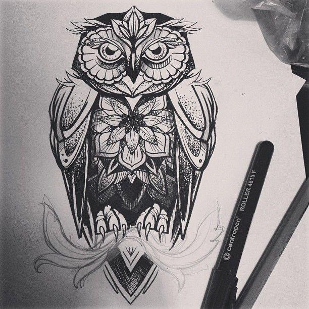 amazing owl