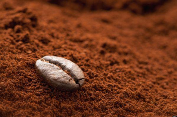 comment conserver le marc de café
