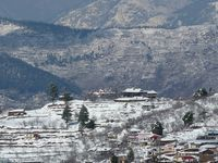 Shimla Package For 3 Nights