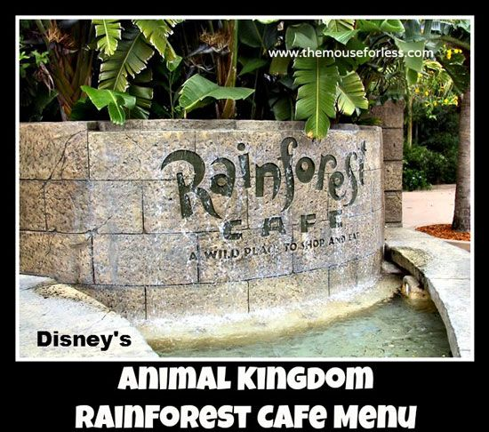Rainforest Cafe San Mateo California