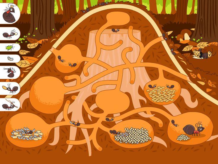 muurahaisen keko