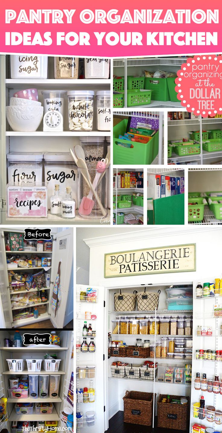kitchen pantry organization tips 19 best dollar organization ideas images on 5487
