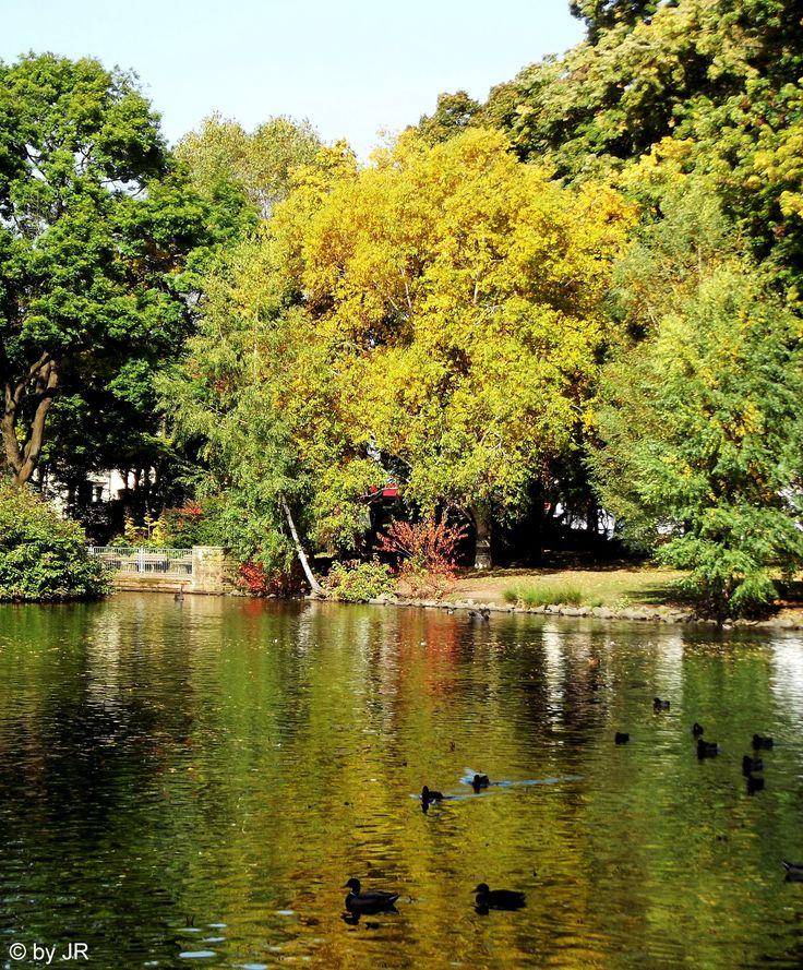 Autumn, Volkspark, Kaiserslautern, Germany (Rheinland