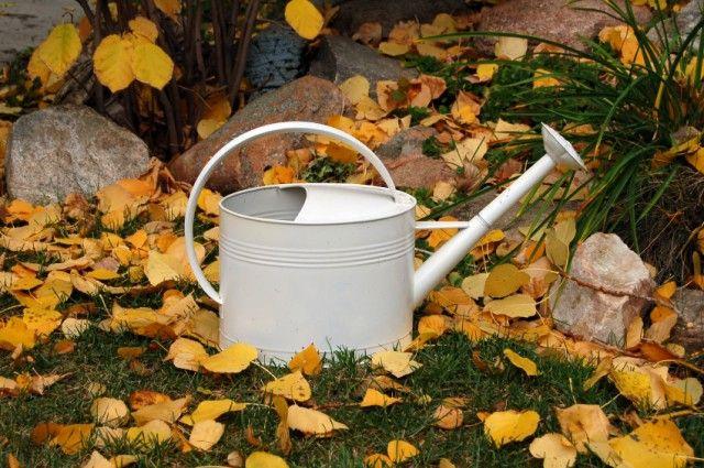 Risparmio idrico irrigazione a goccia - Permettono di risparmiare notevoli quantità di acqua: ecco tutti i vantaggi degli impianti di irrigazione a goccia.