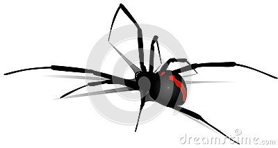 Black widow spider made of vector drawing with shadows.