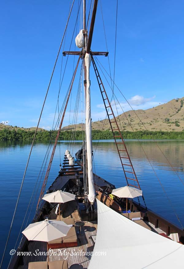 """We sailed Indonesia on an amazing, deluxe """"phinisi"""" - great beaches, scuba diving, and oh my, Komodo dragons! Read all about it here: http://www.sandinmysuitcase.com/alila-purnama-review-cruising-indonesia/"""