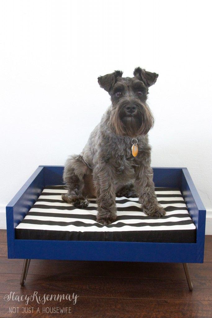 tutorial for midcentury modern dog bed