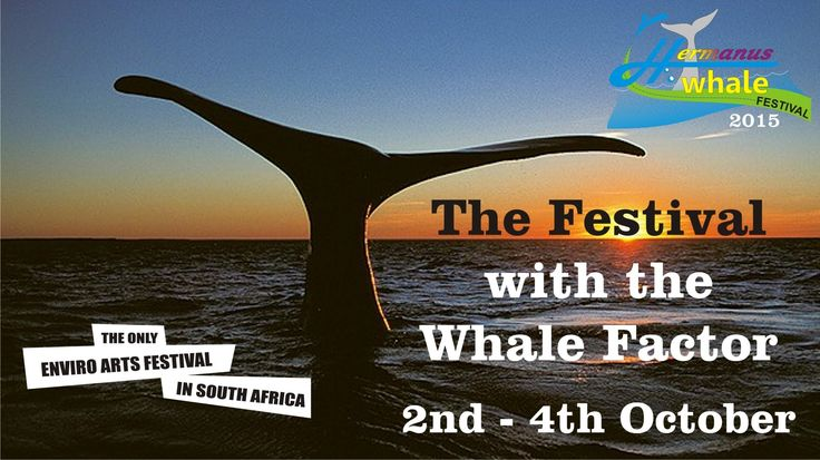 Whale Festival and 3 music stages
