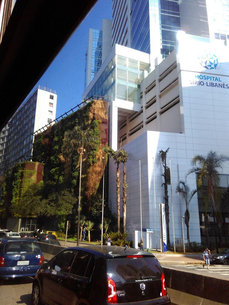 Jardim vertical no hospital - Hospital sirio libanes sao paulo ...