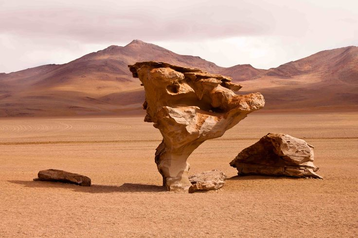 desert rock - Google Search