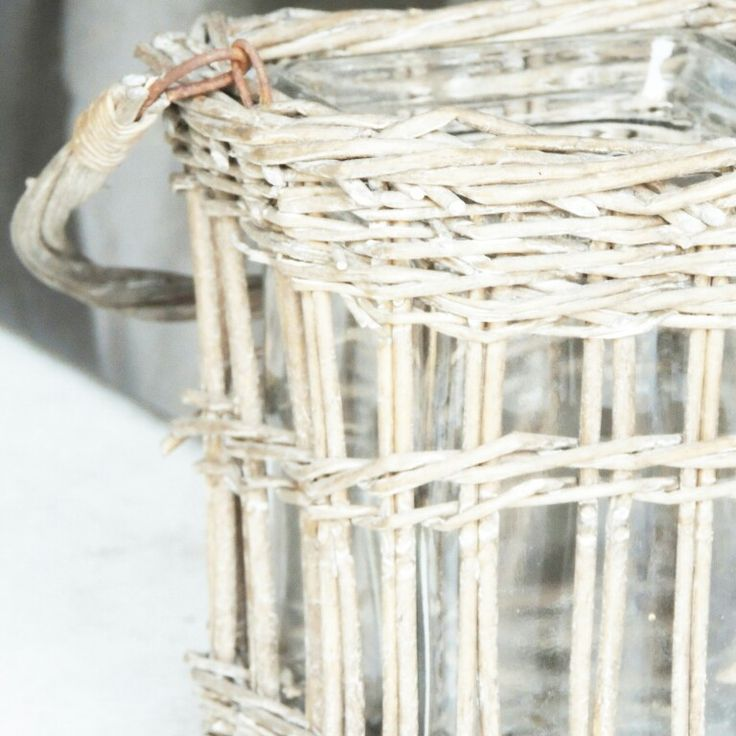 Garden | my own pic | IG: lifepassionn