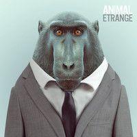 Foule Frontale by ANIMAL ETRANGE on SoundCloud