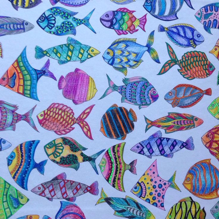 38 Best Ideas About Lost Ocean Page 13 14 Fish Wallpaper