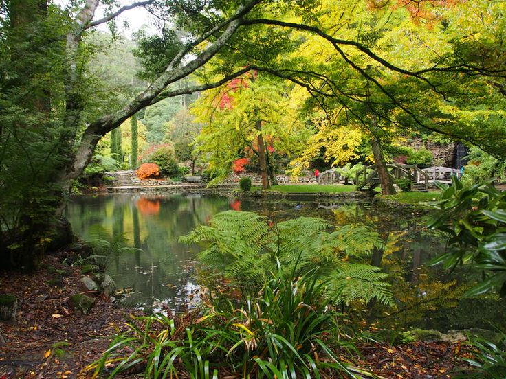 Alfred Nicholas Gardens - Autumn  - Melbourne Mums Group