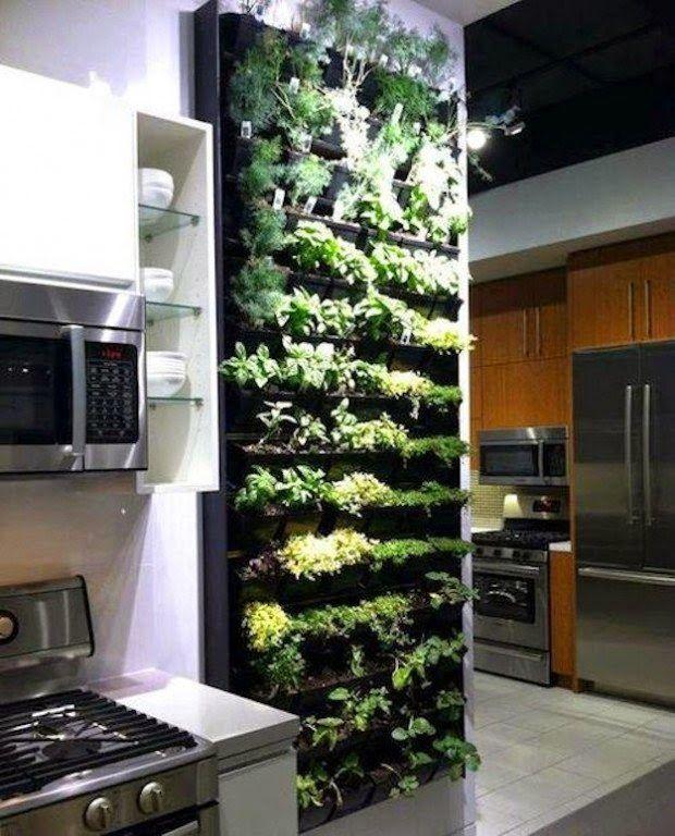 Decoración: 20 ideas sorprendentes para hacer jardines verticales en casa