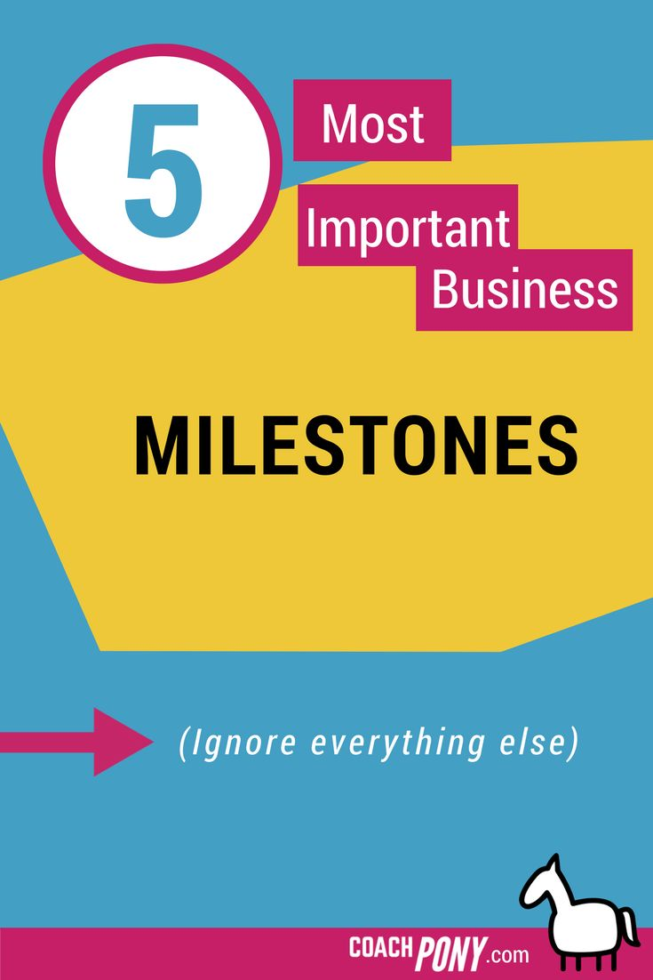 The 5 Most Important #Business Milestones (And A Really Great Month) // Coach Pony Diaries -- #coaching