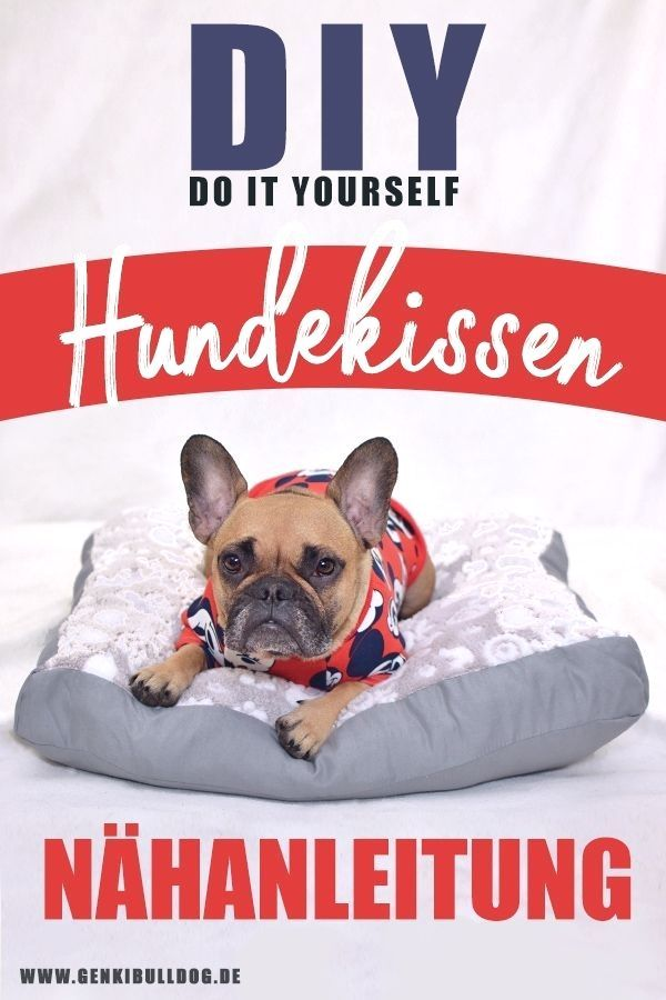 Diy Hundekissen Hundebett Nahanleitung Auf Www Genkibuldog De Diy Hundekissen Hundebett Nahanleitung Auf Www Genki Diy Dog Stuff Dog Bed Cushion Dog Cushions