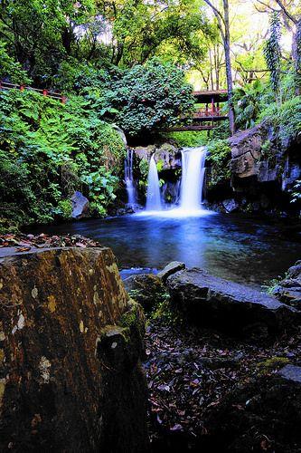 Cascada Río Cupatitzio (Río que Canta)  Parque Nacional, Uruapan Michoacán - México