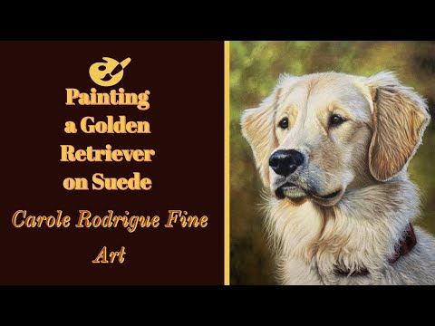 How To Paint A Golden Retriever In Pastels Available Tutorial