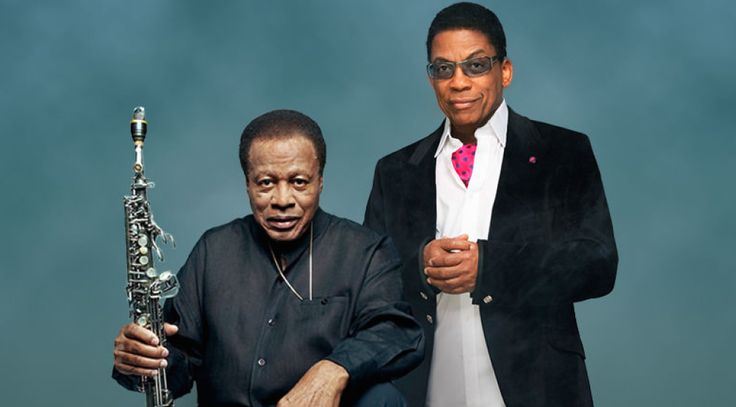 Two legendary musicians, Herbie Hancock and Wayne Shorter, have written a poignant open letter to future artists everywhere.