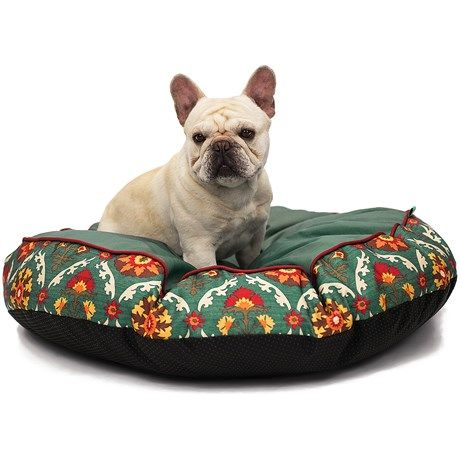 Best 20+ Dog beds clearance ideas on Pinterest | Dog bed ...