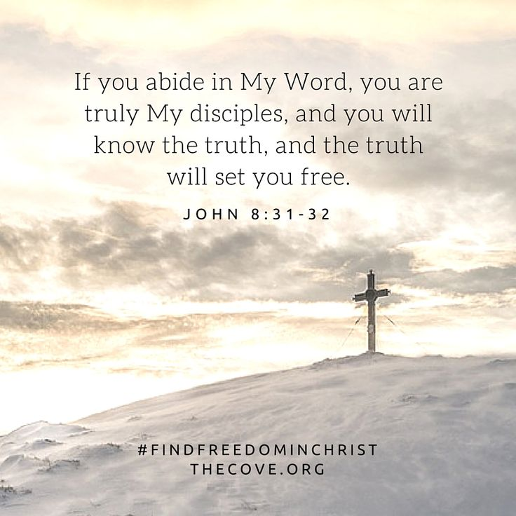 """""""If you abide in My Word, you are truly My disciples, and you will know the truth, and the truth will set you free."""" John 8:31-32"""