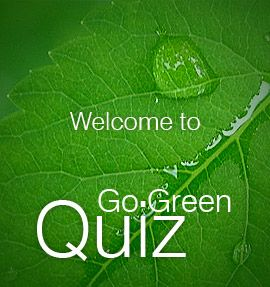 go green quiz - Google Search