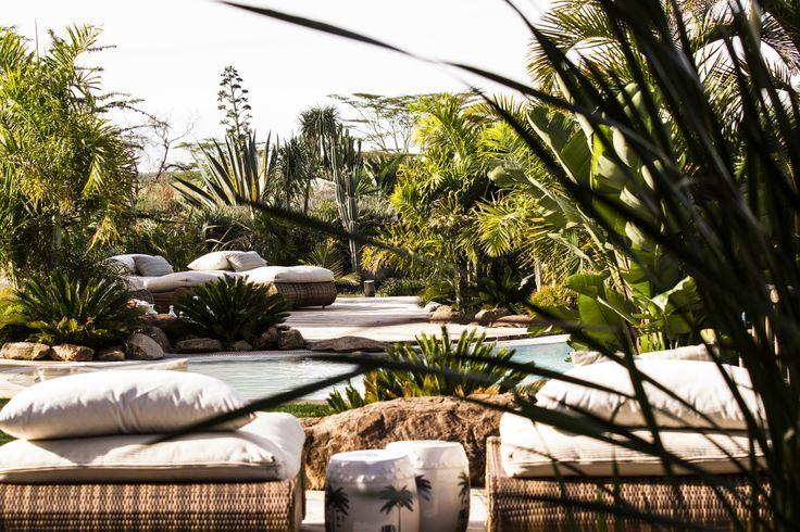 Pool. Oasis.