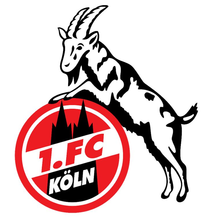1.FC Koln is one of the most popular teams in Big Five European Football Leagues,many people love it and support it,so 1.FC Koln Logo clothing is your best choice. Putting on our soft and comfortable T-Shirt quickly to cheer for your favorite team!