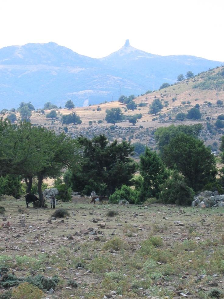 Beautiful landscape in Arzana #Ogliastra