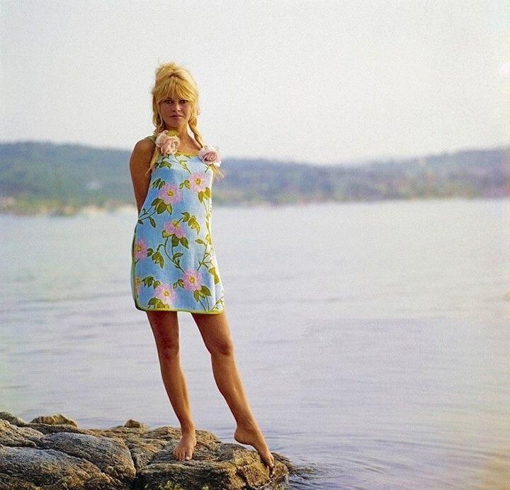 Brigitte Bardot 7 Things You Didn T Know Macarons And Mimi Brigitte Bardot Brigitte French Actress