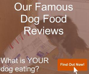 Dog Food Reviews